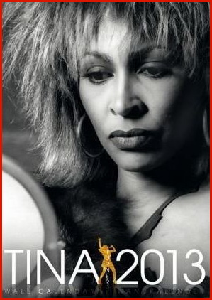 the gallery for gt tina turner 2013